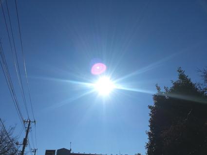 元旦の太陽