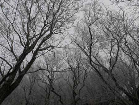 151229黒檜山 (1)s