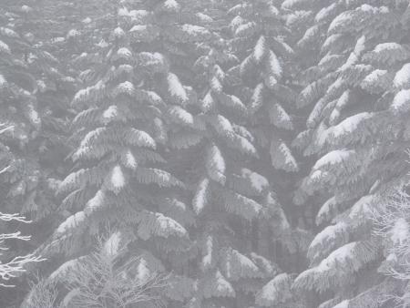 160107北横岳 (4)s