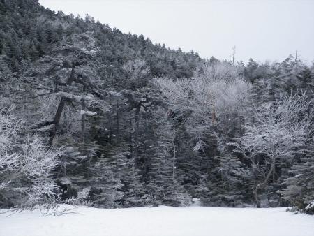 160107北横岳 (17)s