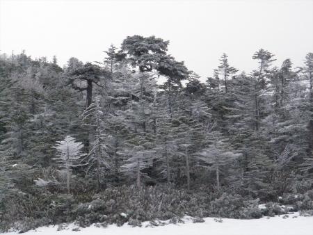 160107北横岳 (19)s