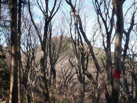 160109仏頂山 (3)s