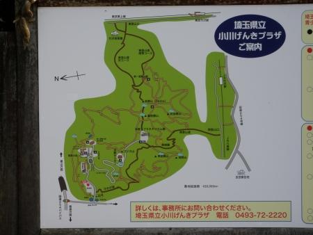 160227金勝山(小川町) (1)s