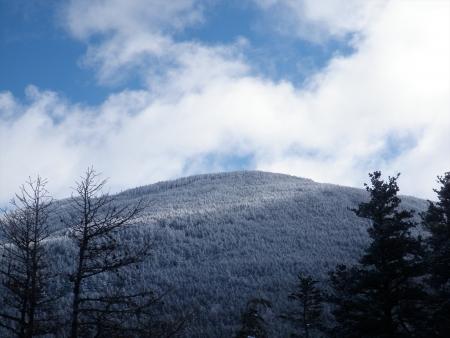 160302黒斑山~仙人岳 (3)s