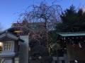 牛天神北野神社