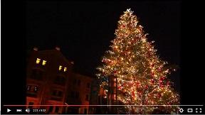 岡村孝子  「クリスマスの夜 2003Version