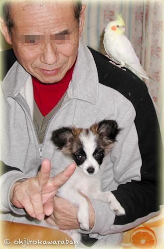 01*1-虎太郎と鷹次郎と父2