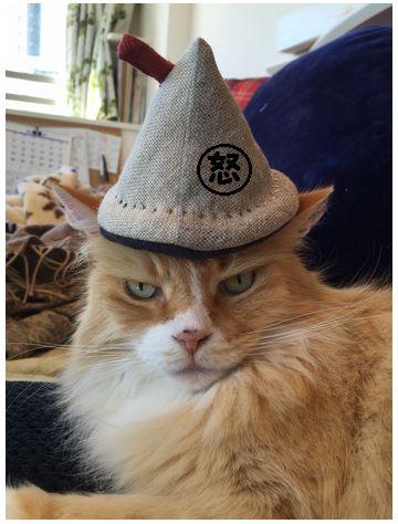 あーの帽子③