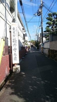 12番萩の寺02