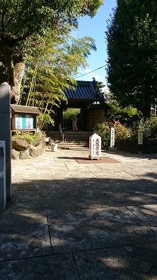12番萩の寺03