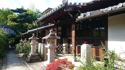12番萩の寺04