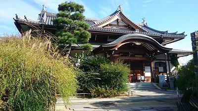 12番萩の寺05