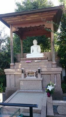 12番萩の寺06