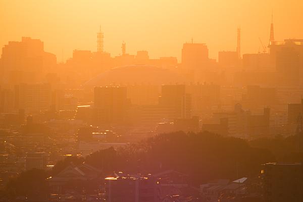 西日にけぶる名古屋の街並み