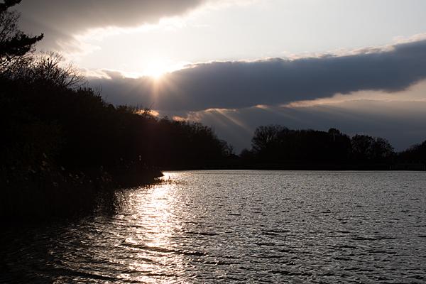 緑が池夕景