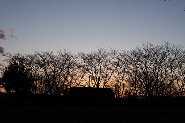 城土公園の夕暮れ