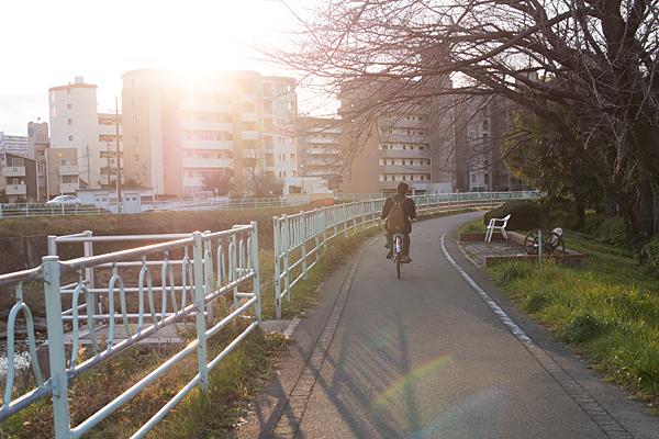 サイクリングロードと自転車高校生