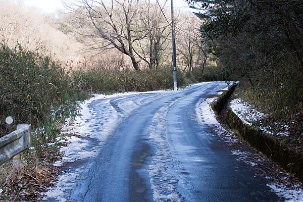 残雪の林道