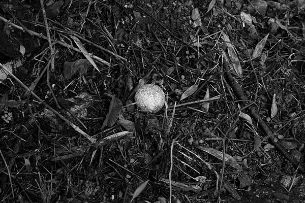 軟式ボール