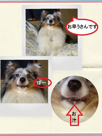 a1_20160114004704381.jpg