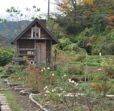 小屋とバラと271108