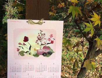 押し花カレンダーとモミジ