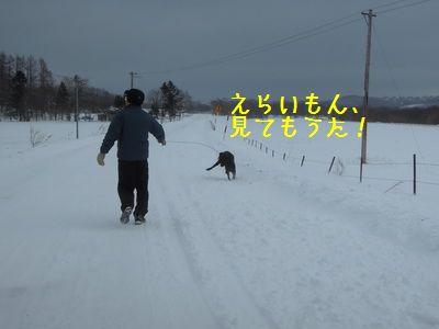 DSCN4483.jpg