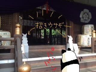 21_20160104104927fa8.jpg