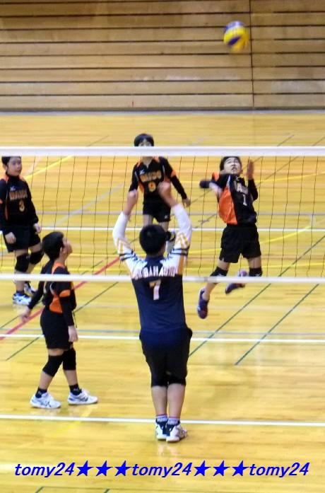 20160214連盟杯男子・新人 (8)