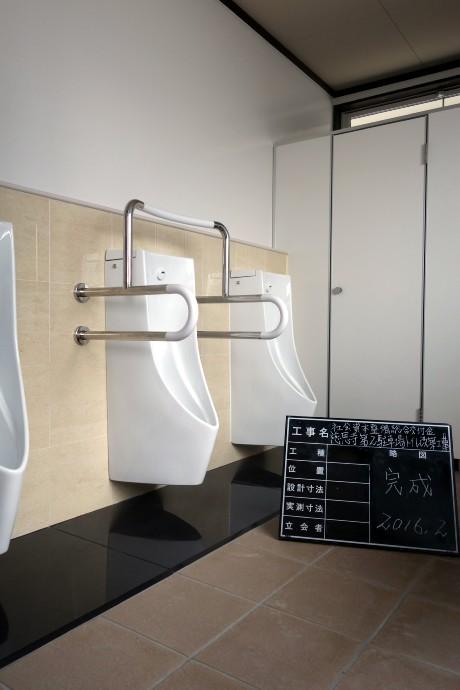 20160229トイレ完成 (4)