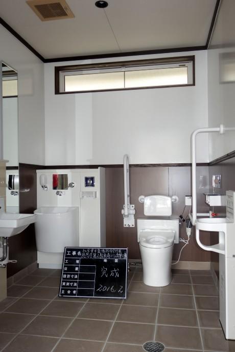 20160229トイレ完成 (6)