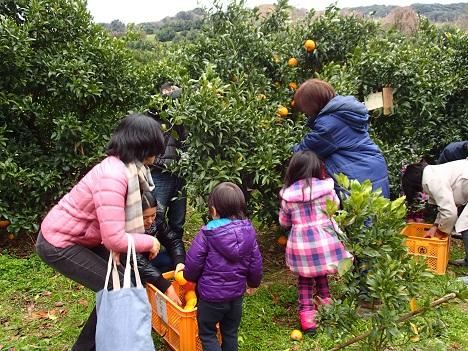 第9回収穫祭