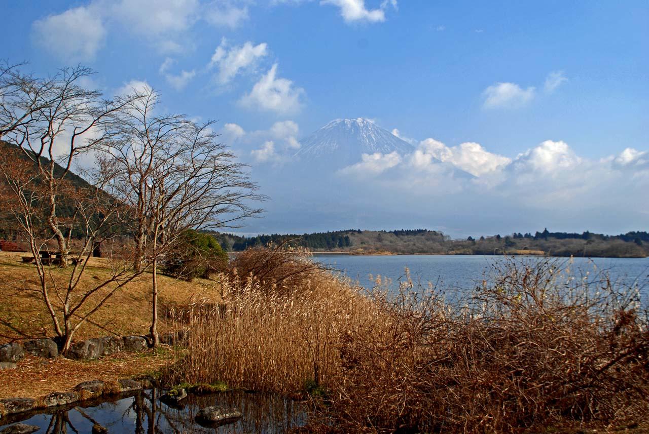 DSC_8795根場と田貫湖