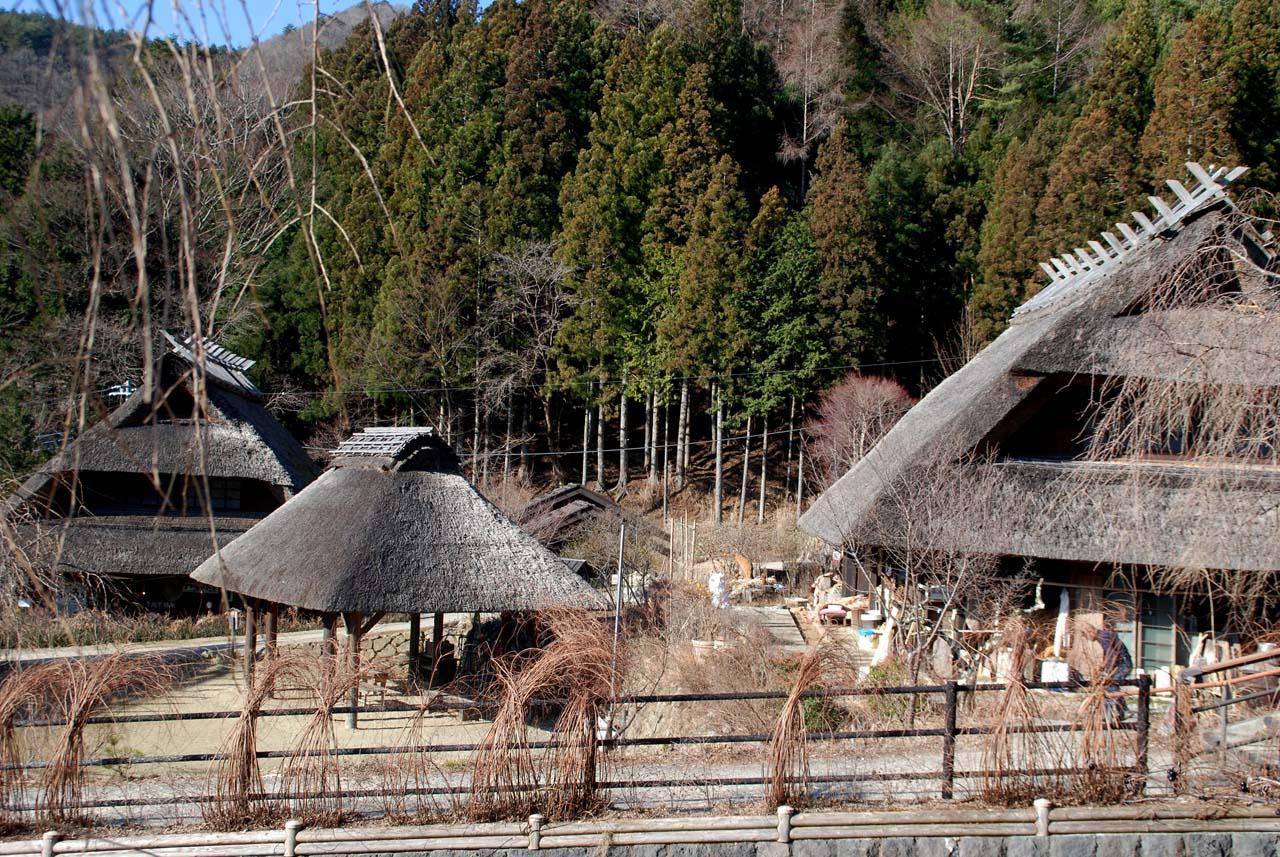 DSC_8673根場と田貫湖