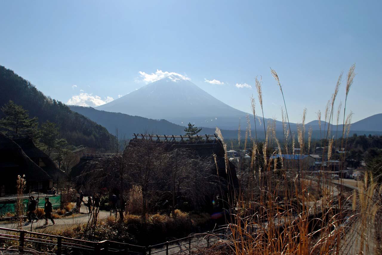 DSC_8716根場と田貫湖