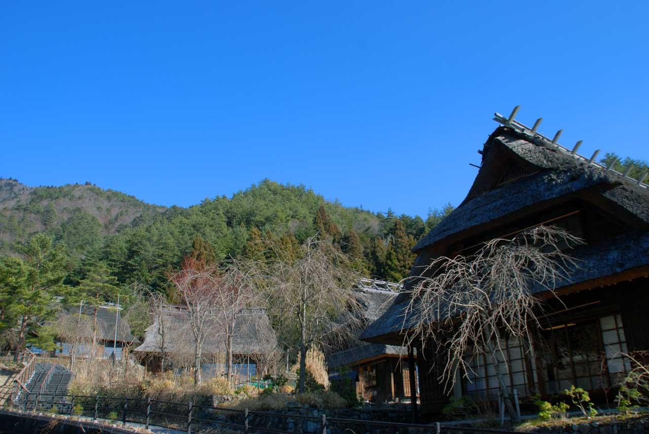 DSC_8789根場と田貫湖