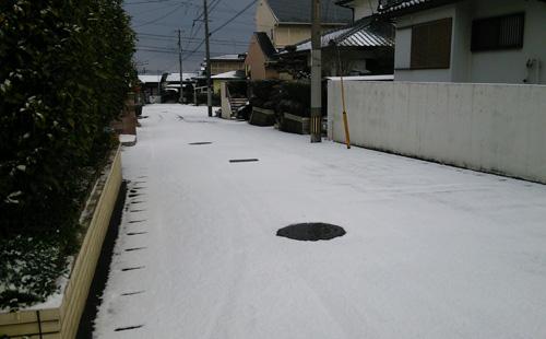 雪降ったよー1601241