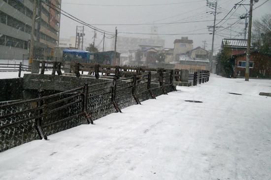 雪降ったよー1601244