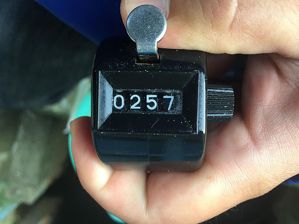 7121612.jpg