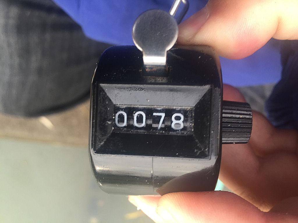 7122507.jpg