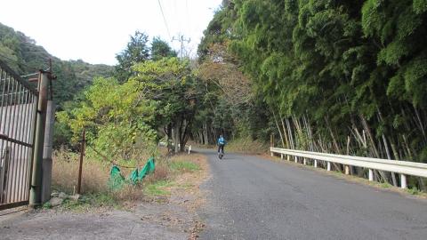 県道119号線に向かって登ります。