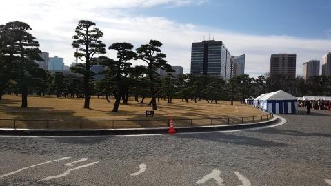 皇居は松も美しく・・・。
