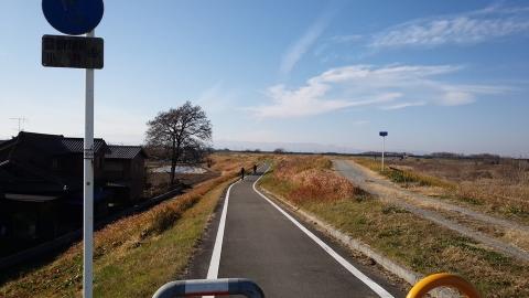 入間川自転車道、いいな~