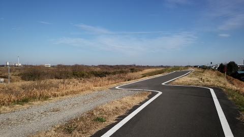 入間川自転車道。来た道を振り返る。
