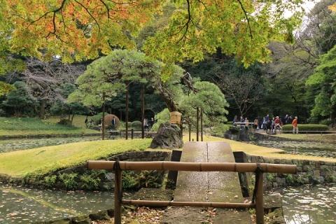 08 小石川後楽園 内庭