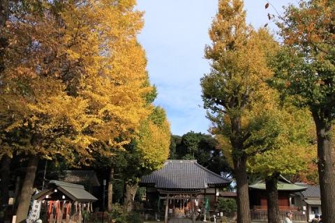 01 平塚神社