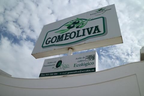 0804 Gomeoliva-M