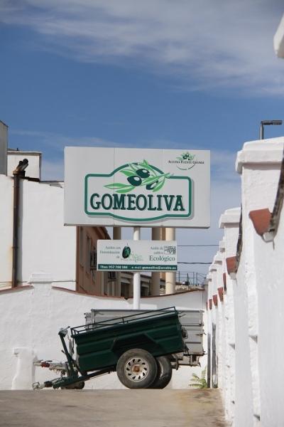 0807 Gomeoliva