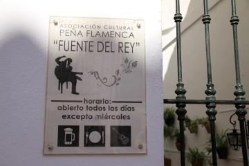1131 Pena Flamenca