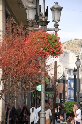 1406 Granada